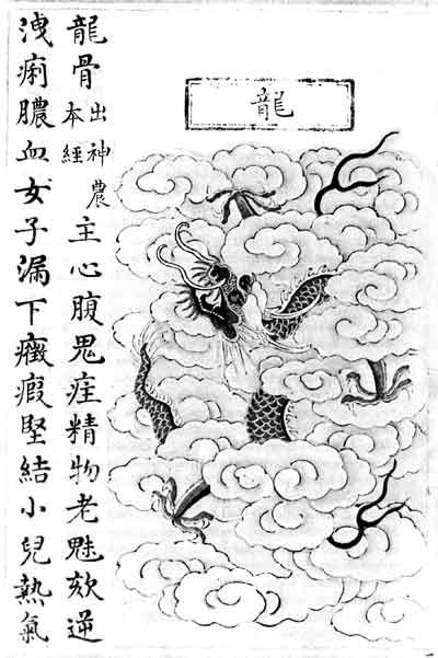 Illustration of the dragon as source of dragon bone decoct for 1.5/hr or longer and meditate= immense grounding