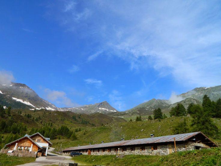 malga Bordolona, Bresimo     Natura, cultura, escursioni e curiosità in Val di Peio e non solo...