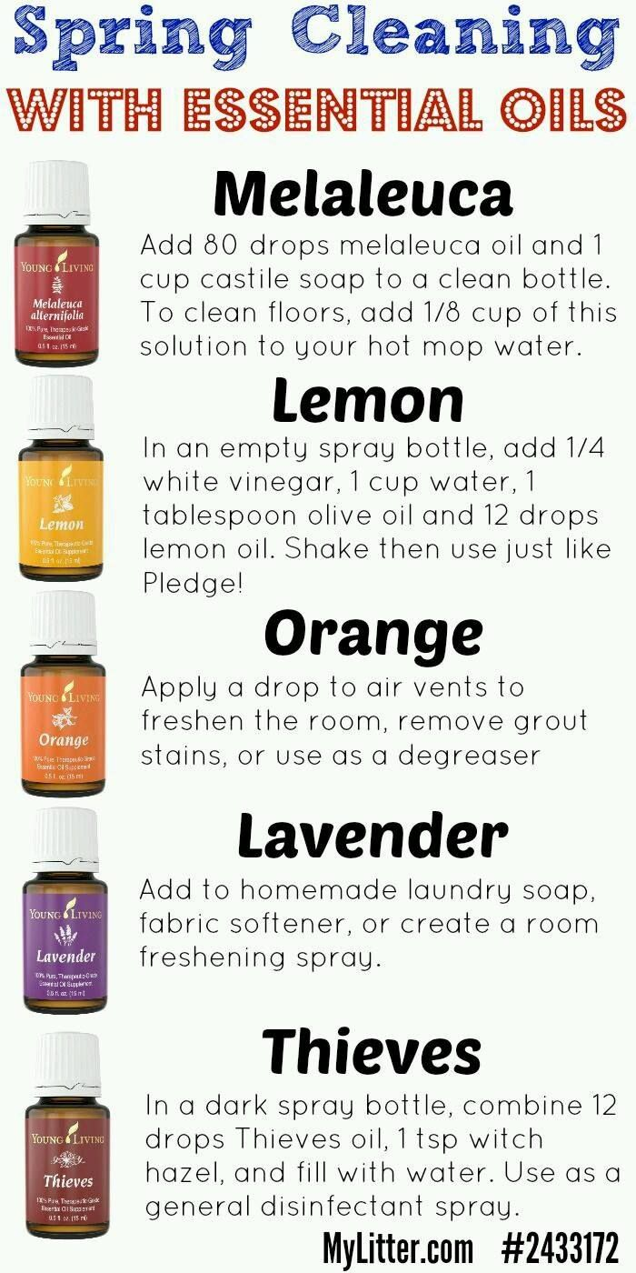 best images about cleaning tips and help sprays 17 best images about cleaning tips and help sprays dryers and young living essential oils