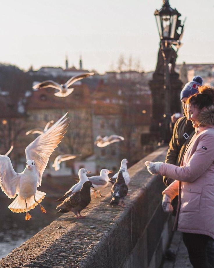 Charles Bridge, Prague, Czech Republic | Prague photo | Prague Travel Tips | Prague Photo Locations #prague #czechrepublic