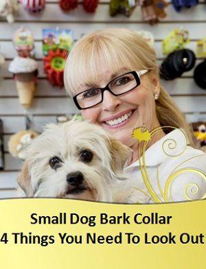 5 Best PetSafe Bark Collar For Small Dog Recommendations: 1. PetSafe Elite Dog Bark Collar 2. PetSafe Gentle Spray Bark Collar 3. PetSafe Deluxe Bark Control Collar 4. PetSafe Elite Spray Bark Collar for Little Dogs 5. PetSafe Deluxe Little-Dog Bark Control Collar