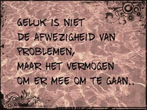 Geluk is niet de afwezigheid van problemen, maar het vermogen om er mee om te gaan ...