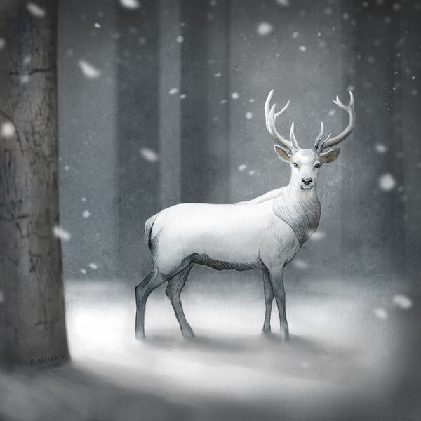 34 Best Enchanted The White Stag Images On Pinterest Deer