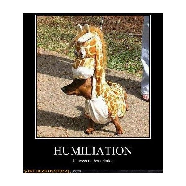 Very Demotivational - The Demotivational Posters Blog ❤ liked on Polyvore featuring funny, quotes, phrase, saying and text