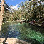 Wekiwa Springs State Park, Apopka: See 591 reviews, articles, and 485 photos of Wekiwa Springs State Park, ranked No.1 on TripAdvisor among 21 attractions in Apopka.