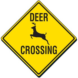 Donna, Radio Caller, Wants Deer Crossing Signs Moved So Deer Won't Cross Highways