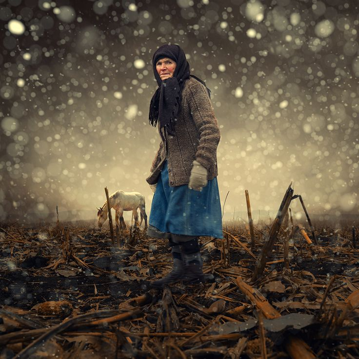 First snow by Caras Ionut