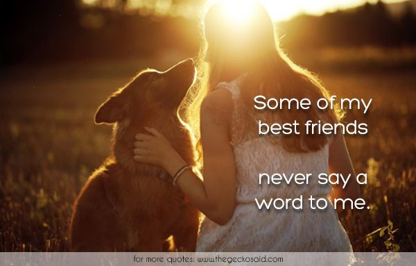 Some of my best friends never say a word to me.  #animal #best #dog #doggie #friend #love #never #quotes #say #some #word  ©2016 The Gecko Said – Beautiful Quotes