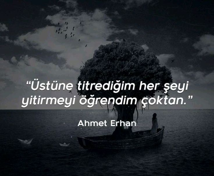 Ahmet Erhan