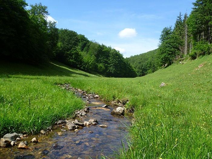 La vallée de la Roche au pied du mont Beuvray #Morvan #Bourgogne
