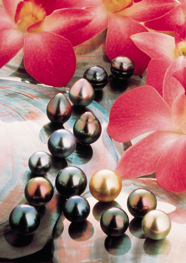 The many colors of Tahitian Cultured Pearls (image © - Alain Nyssen) in French Polynesia.