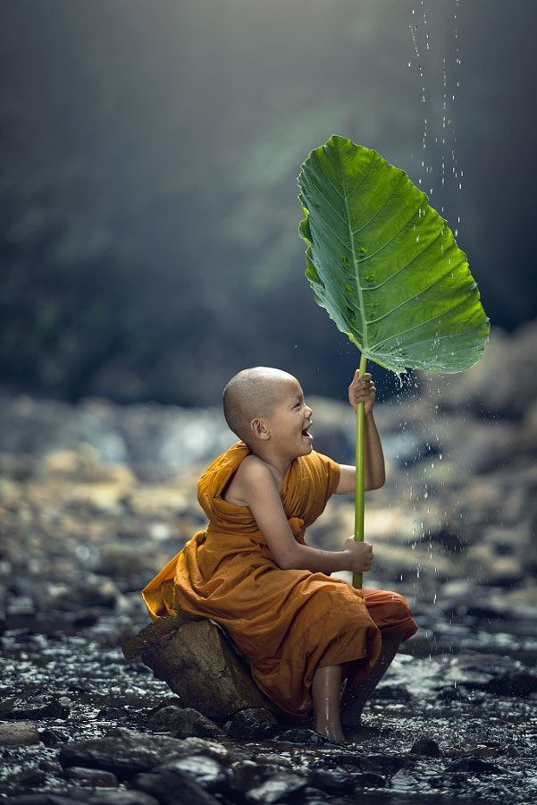 Young novice Buddhist Monk in Thailand