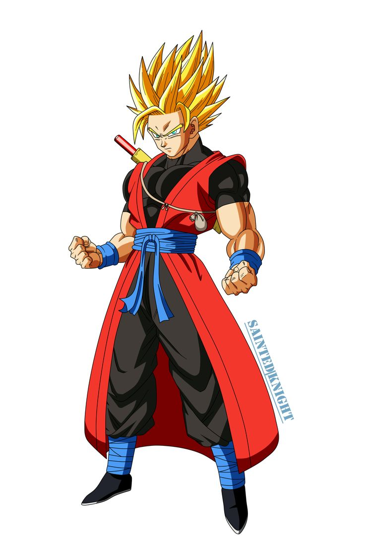 dragon_ball_heroes___xeno_goku_ssj_render_by_saintedknight-dau6x68.png (1600×2399)