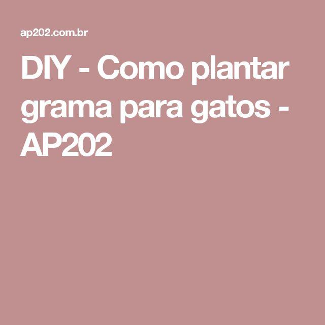 DIY - Como plantar grama para gatos - AP202