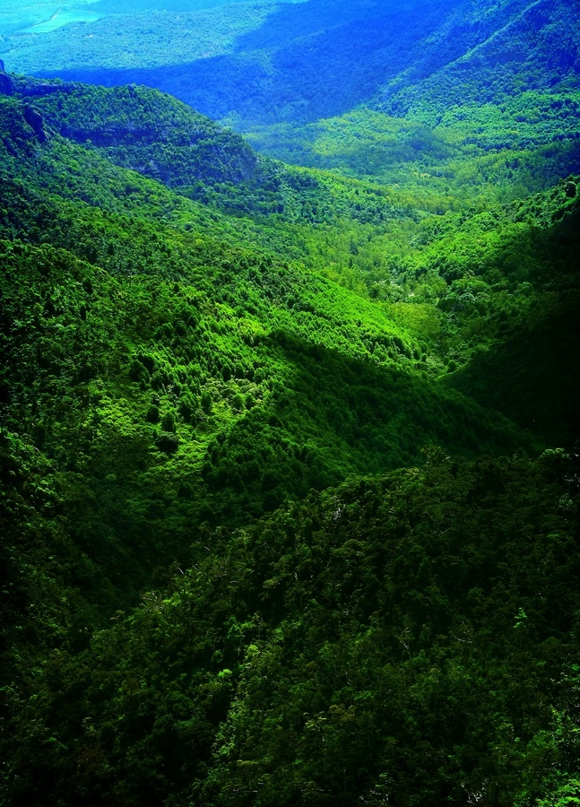 black river gorge, mauritius