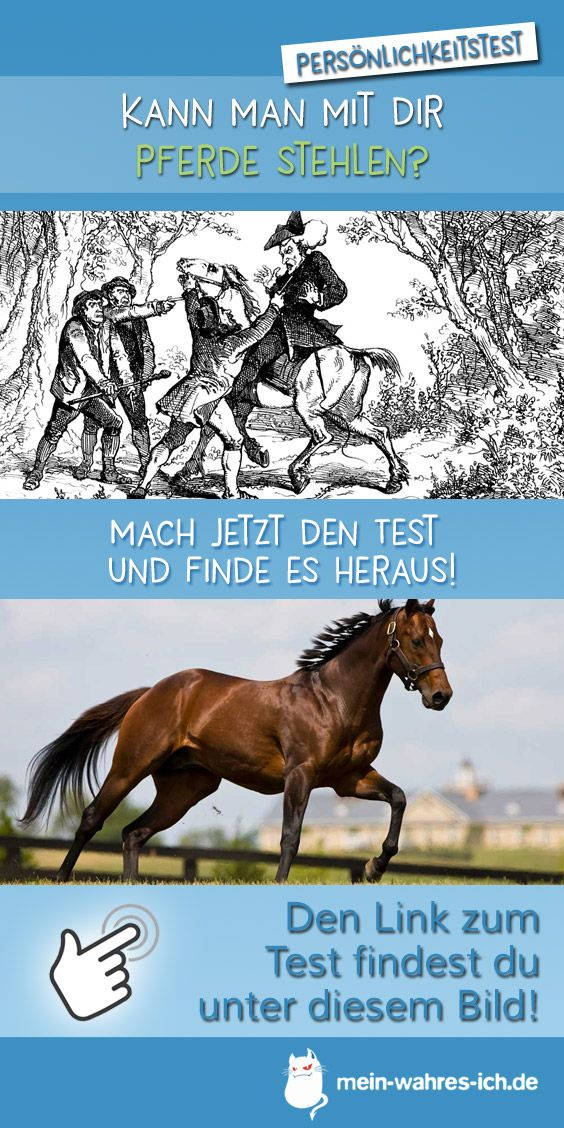 mit dir kann man pferde stehlen