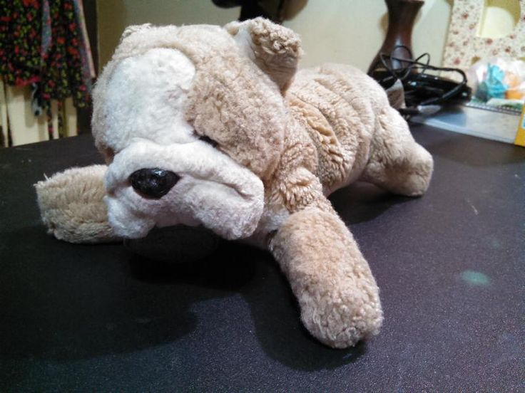 Found on 04 Nov. 2015 @ 32nd St & Bell Rd, Phoenix, Arizona. Cute little stuffed bulldog found in the parking lot in the rain at Fry's Marketplace. He's getting dry and cozy at our place waiting to be reunited with his kid. Yomiko Classics tag around his nec... Visit: https://whiteboomerang.com/lostteddy/msg/wobnn6 (Posted by Mandy on 05 Nov. 2015)