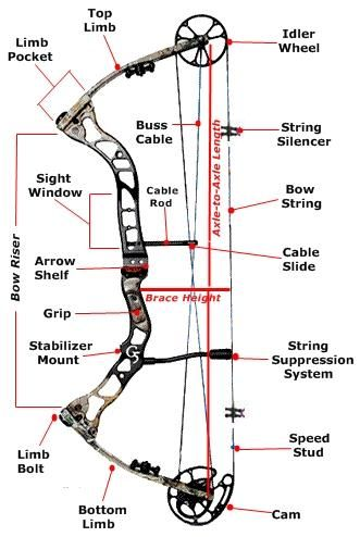 Archery terms diagram - Wiring images