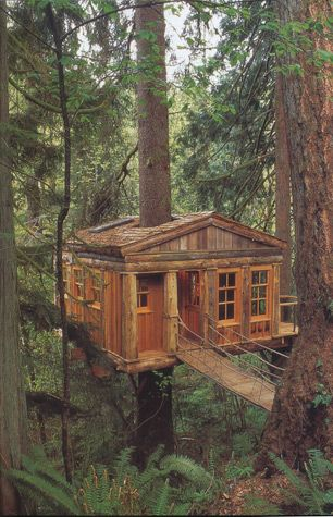 I want to build a cozy treehouse retreat (or at least spend the night in one).