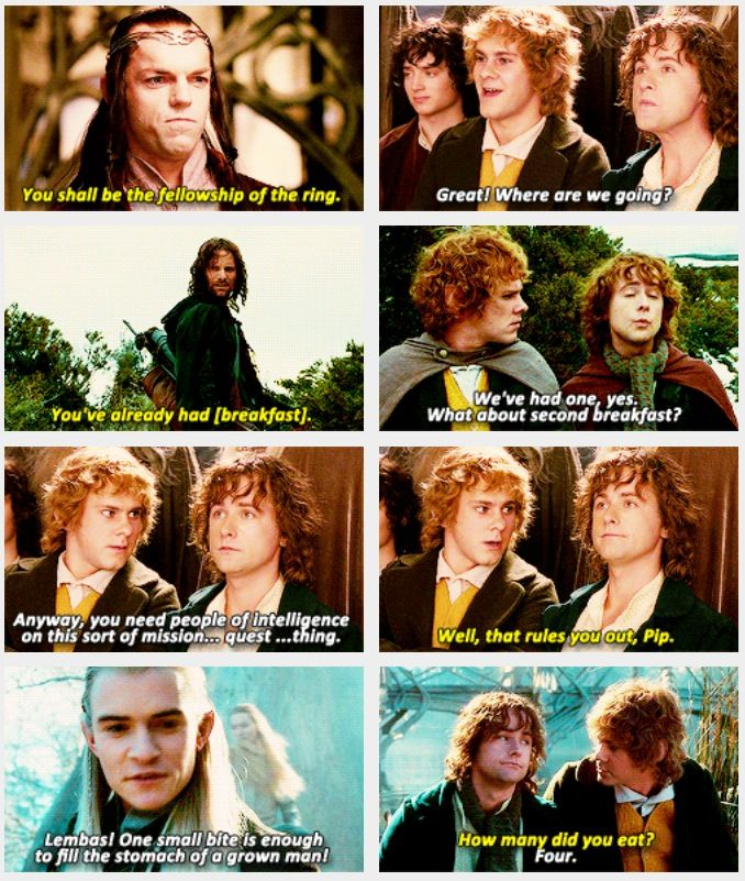 Merry and Pippin <3 Lord of the Rings -- LOL best comic relief of the LOTR films, love these two!!