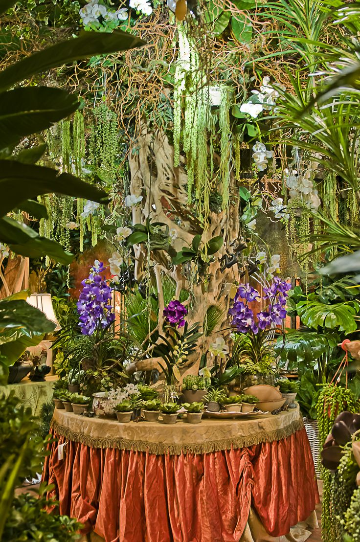 13 best Floral Emporium,West Palm Beach,Florida,Antique Row images ...