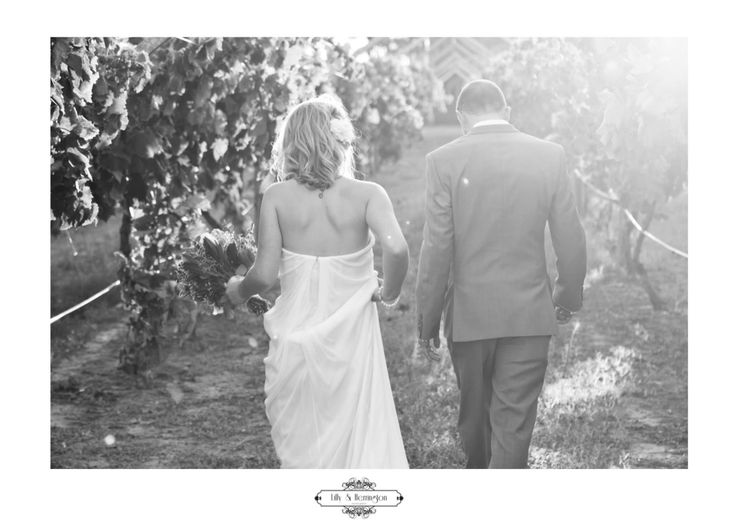 Sunset wedding photoshoot! Swan Valley -WA , walking through the vineyards  Lilly + Herrington Photography Www.lillyandherrington.com Www.facebook.com/lillyandherrington