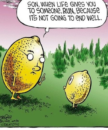 Funny Cartoons About Life: When Life Gives You Lemons