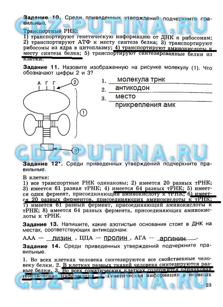 Ответы на вопросы по литературе ю.в.лебедев за 10 класс