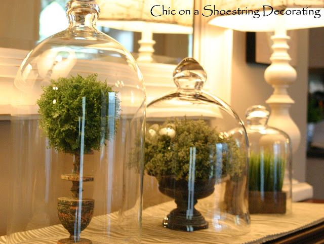what to put under glass domes cloches decor