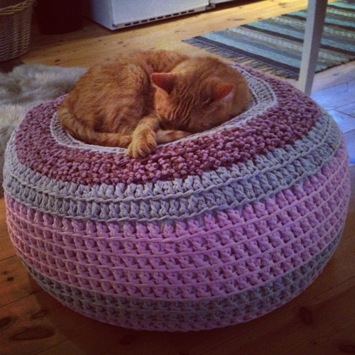 My cat loves it - if you want to know how I made it. Welcome to my blog!  http://bautawitch.se/2013/02/27/sticka-eller-virka-en-trendig-sittpuff/