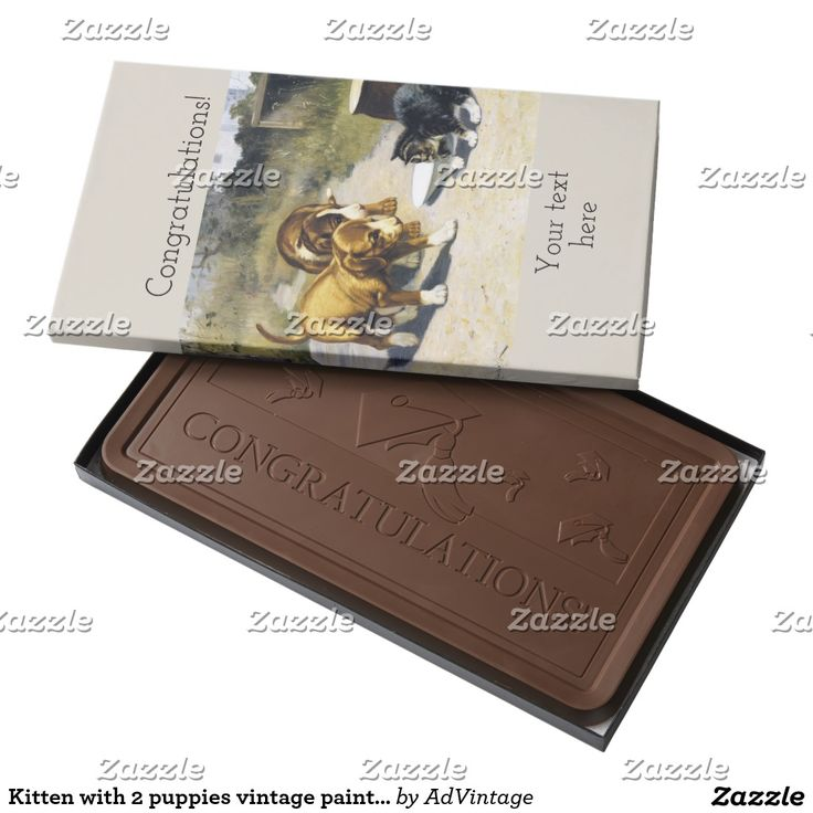 Kitten with 2 puppies vintage painting milk chocolate bar