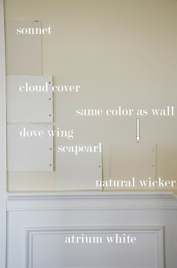 Sonnet by Benjamin Mooregreat warm wall color Use with