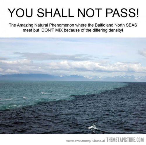 OceansThe Mars, Buckets Lists, Baltic Sea, North Sea, The Ocean, Sea Meeting, Places, Nature Phenomena, The Sea