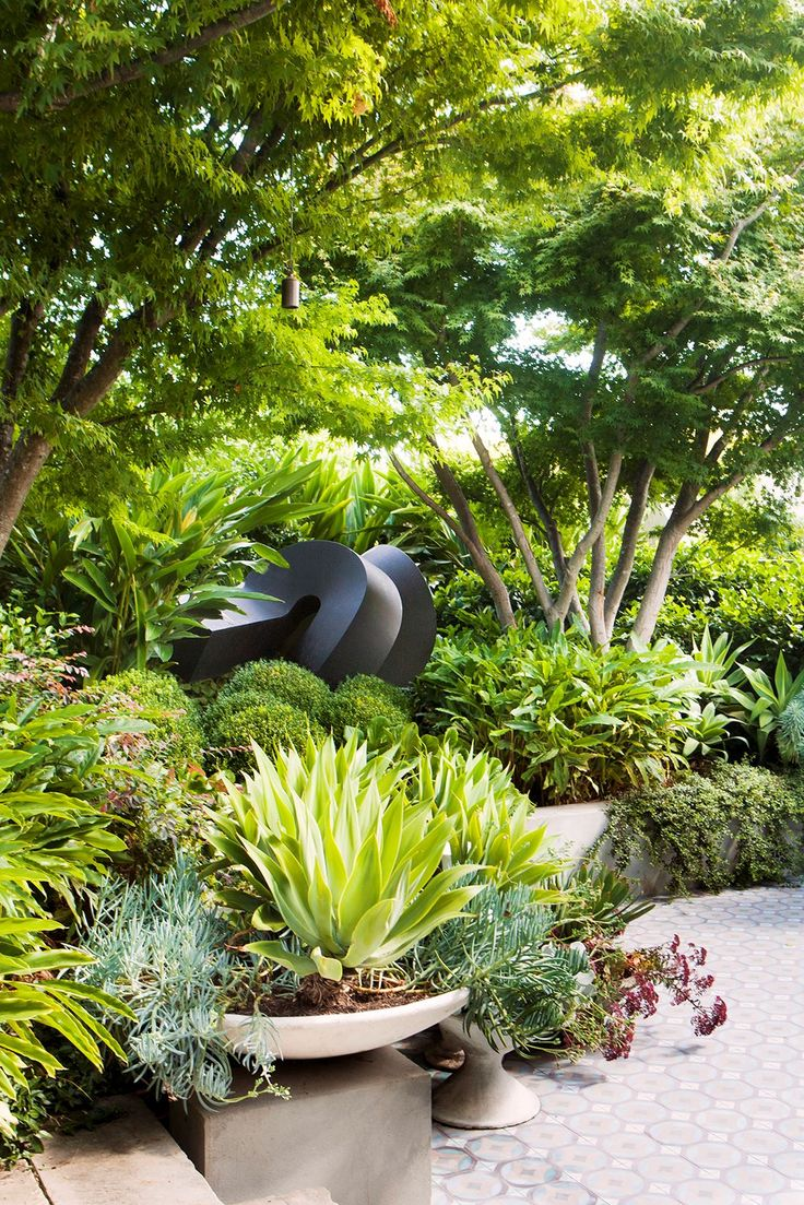Luxurious sub-tropical Melbourne garden:An imposing bronze sculpture by Australian-American artist Clement Meadmore makes a statement in the entry garden, under a canopy of transplanted maples, lush foliage and clipped English box (*Buxus sempervirens)*.