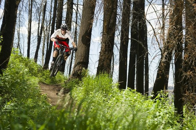 Fox Creek Trail - close to town, great for mountain biking, trail running, and hiking.