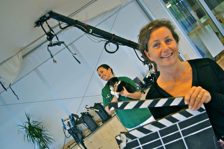 Meet reality show celebrity Marie Jury from Djurens Sjukhus på TV3.  Få råd om ditt husdjurs hälsa av veterinär Marie Jury på https://www.morrr.com/sv/experts/info/marie-jury