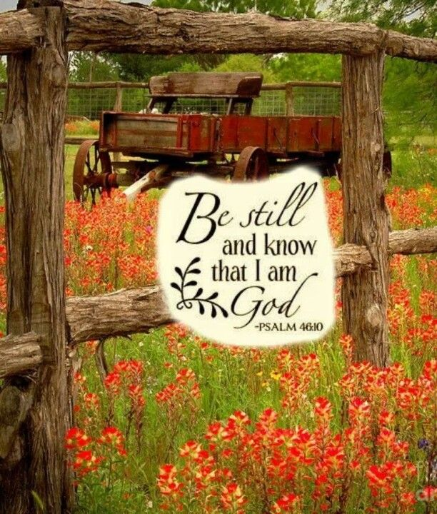 Psalm 46:10 Be still, and know that I am God: I will be exalted among the heathen, I will be exalted in the earth. (KJV)
