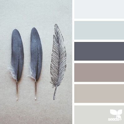 """today's inspiration image for { feathered tones } is by @julie_audet ... Julie has one heck of a talented eye & her gallery is *amazing* ~ i simply love her """"simplified nature"""" aesthetic ... it is well worth your time to click over, explore, and follow her (and did you know she is the @nio_mod_julie of @nothingisordinary_ ?!) ... thank you Julie for another *incredible* #SeedsColor image share!"""