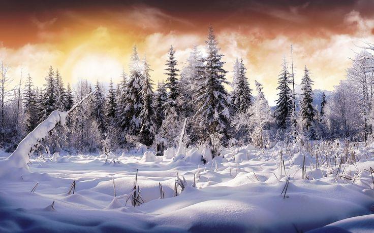 Winter. My Love.