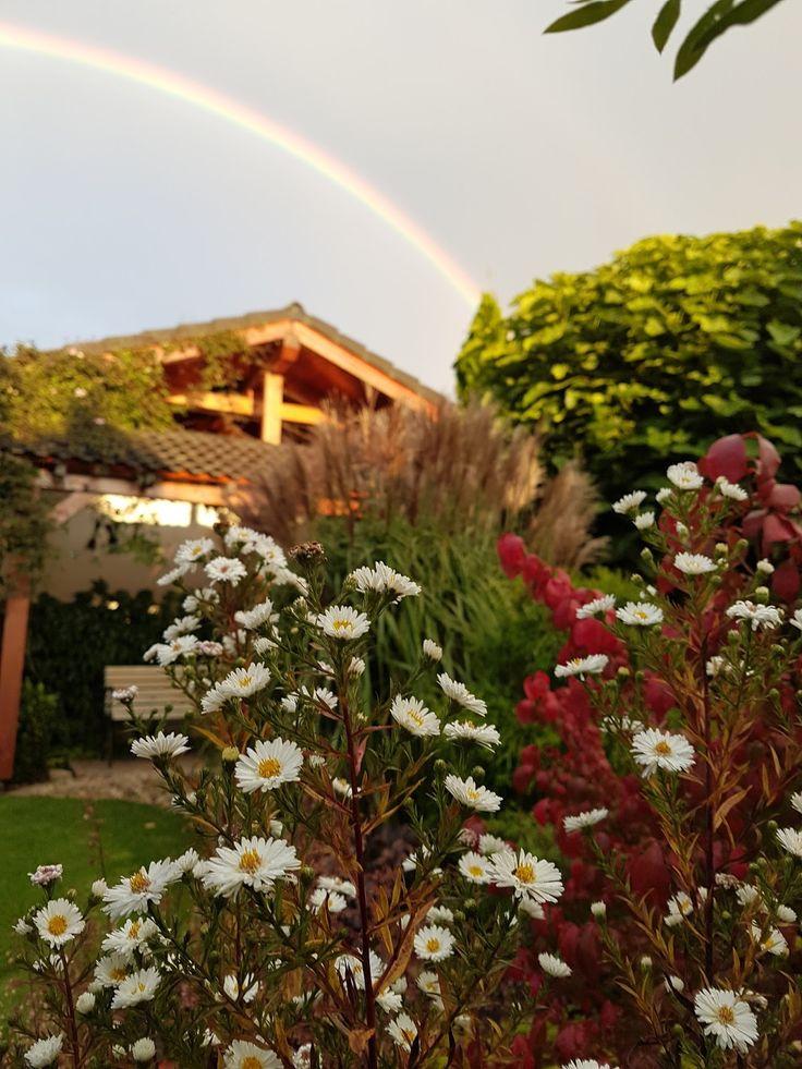 Zahradní blog, zahradní poradenství,okrasná zahrada,květiny