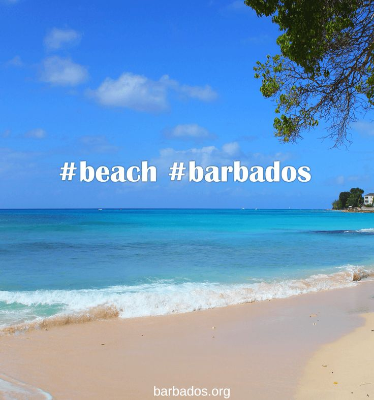 Our two favourite hashtags  #beach #barbados