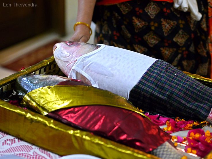 Send Wedding Gifts Online India: Fish Dressed As A Man And Woman. #Dhaka #Wedding It Is