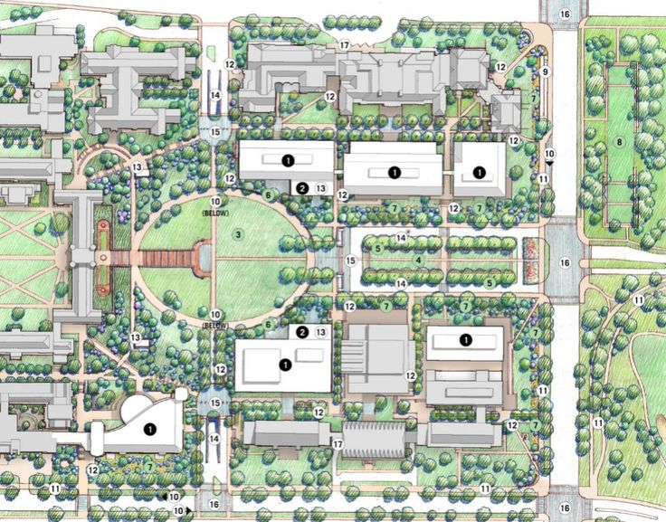1000 Images About Washington University In St Louis On Pinterest Washington University