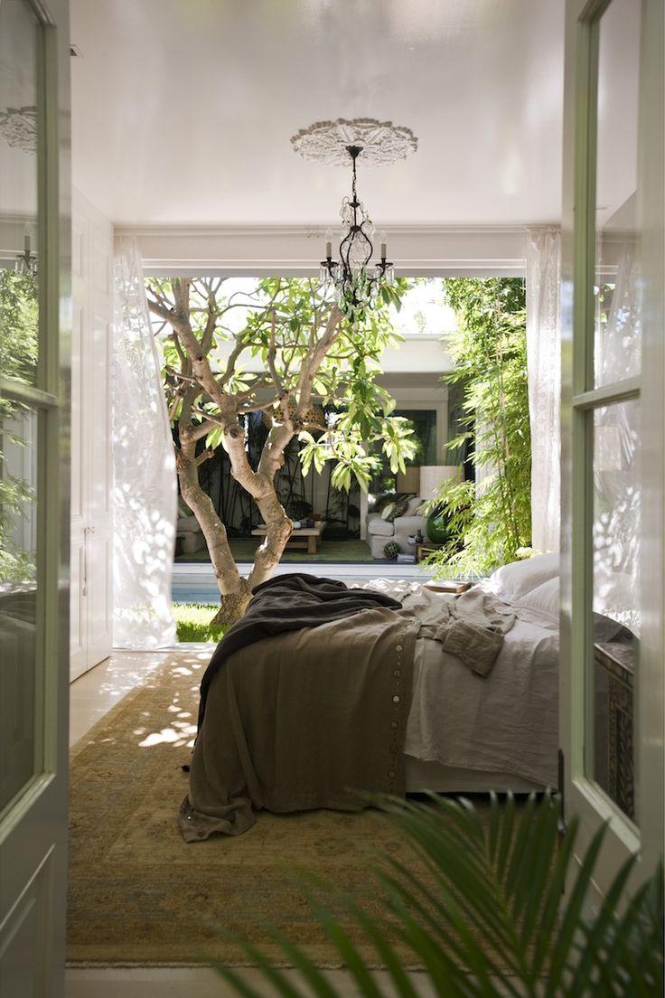 【四季を楽しむ】低木の落葉樹の植わった中庭に面するベッドルームとリビング | 住宅デザイン