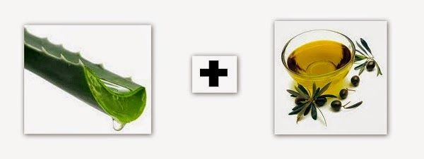 Receita caseira para combater estrias: creme de babosa e azeite de oliva