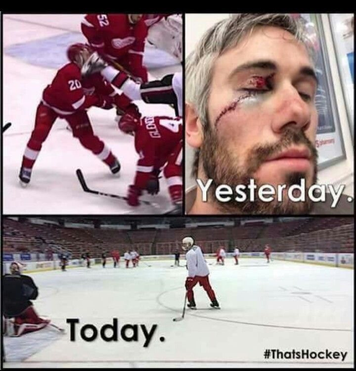 Because red wings hockey