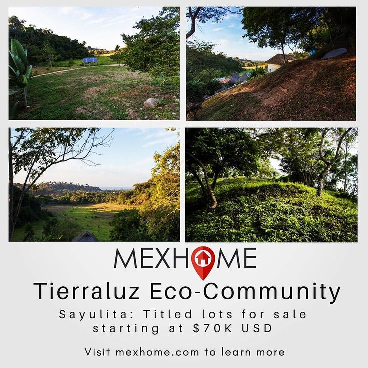 New Listing - Titled lots for sale at Tierraluz in Sayulita. Ocean Jungle Town and Pastoral Views from many vistas on the almost 9000 m2 of community-owned land which includes organic farmland food forest  meditation vistas and jungle trails. Find out more at mexhome.com  @TierraLuzSayulita @TierraLuzMX #mexhomerealestate #realestateinvestor #realestatemexico #realestatemex #realestatesayulita #sayulitarealestate #mexicorealestate #ecocommunity #sustainabledevelopment #investmentopportunity…