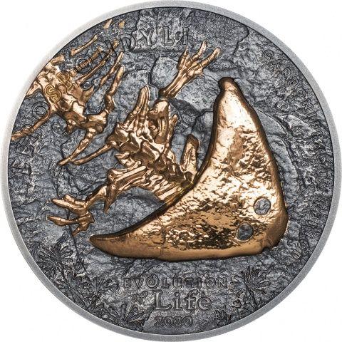 Diplocaulus Evolution Of Life 1oz Silver Coin Reverse In 2020 Silver Coins Coins Evolution