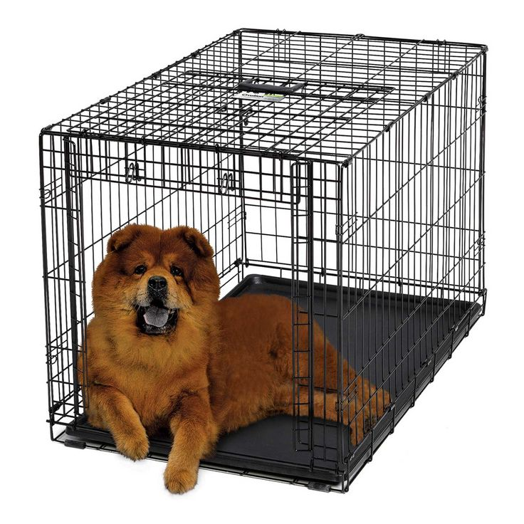 Midwest+Ovation+Single+Door+Folding+Dog+Crate+-+For+dogs+41-70+lbs.+Up+&+away+door+conveniently+slides+and+stows+overhead.+Fold+and+carry+style+for+easy+travel+and+storage.+Comes+with+divider+panel+to+easily+adjust+for+a+growing+puppy. - https://www.petco.com/shop/en/petcostore/product/midwest-ovation-single-door-folding-dog-crate-5000919--1