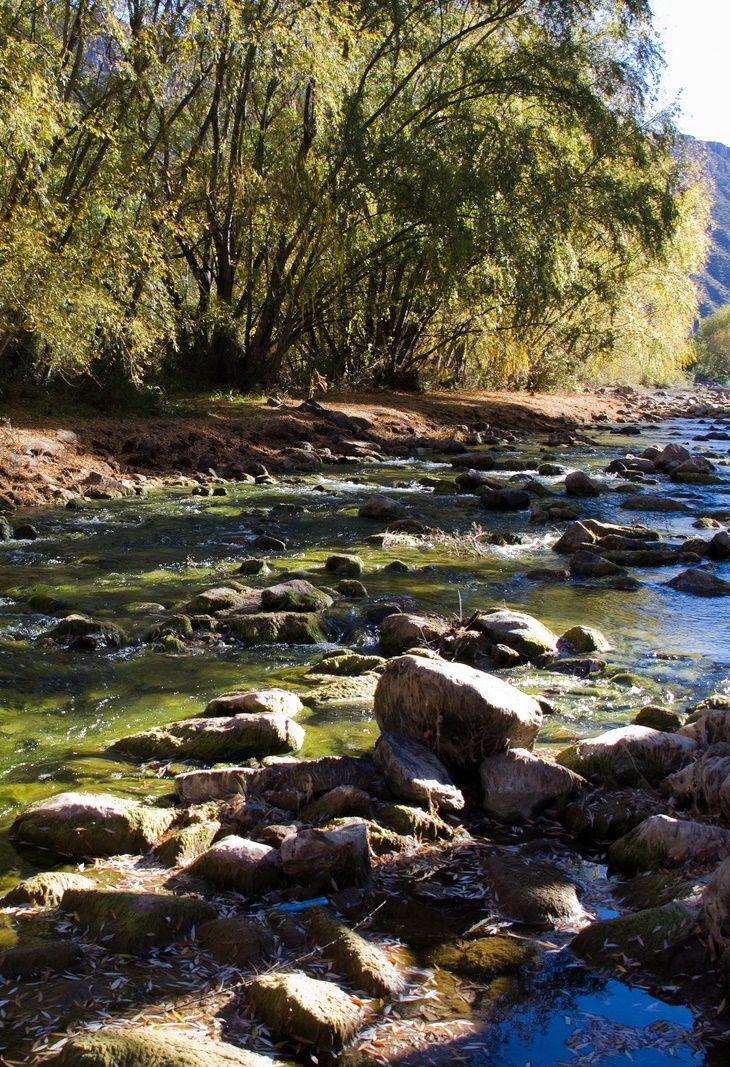 Atuel River (Río Atuel)   Near San Rafael (Cerca de San Rafael)   Mendoza   Argentina